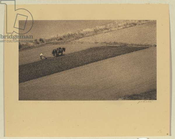 Landscape pattern, c.1934 (chlorobromide photo)