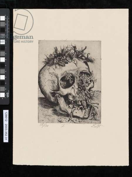 Skull, illustration from the portfolio 'Der Krieg', 1924 (etching)