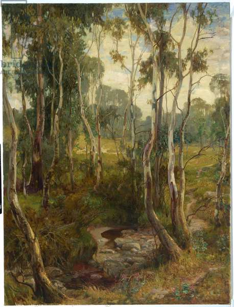 The Saplings, 1904-06 (oil on canvas)