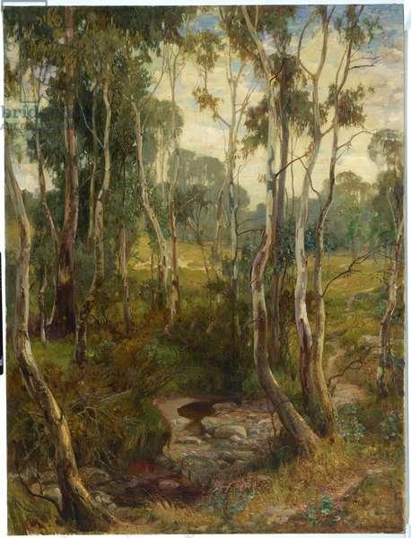 The Saplings, 1904-06 (oil on canvas)