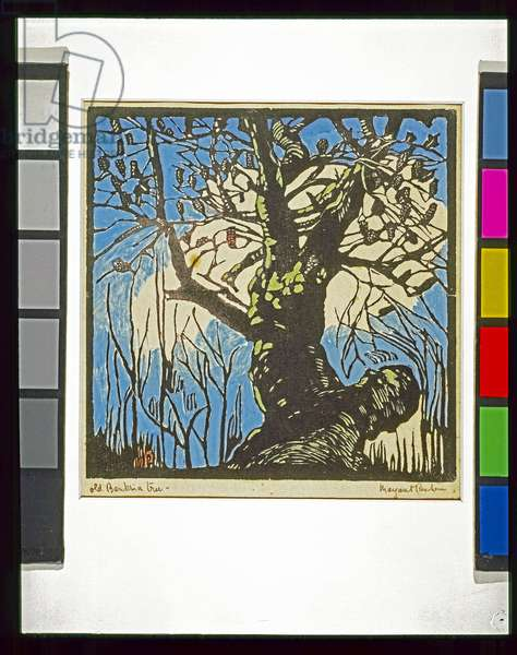 The Banksia tree, 1939 (hand-coloured woodcut)
