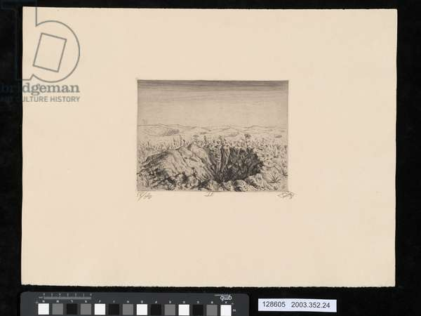 Bomb-crater with flowers, Spring 1916, illustration from the portfolio 'Der Krieg', 1924 (etching & drypoint)