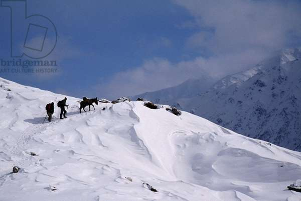 Herders and mule depart the Rupal Valley (photo)