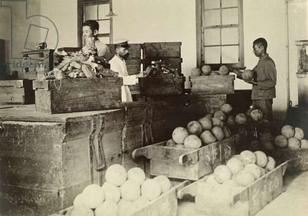 Men inspect imported opium at the monopoly bureau, Taiwan, 1920 (b/w photo)