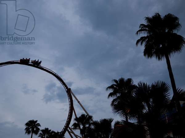 Silhouetted rollercoaster and palm trees at an amusement park (photo)