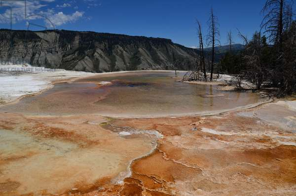 colourful mineral deposits at Mammoth Hot Springs form terraces in Yellowstone National Park, Wyoming (photo)