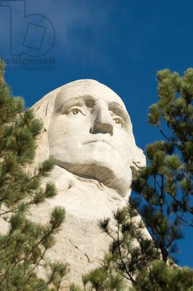 Low angle view of president George Washington's sculpture through the pine trees on Mount Rushmore (photo)