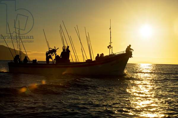 Fishermen head out to sea at sunrise (photo)