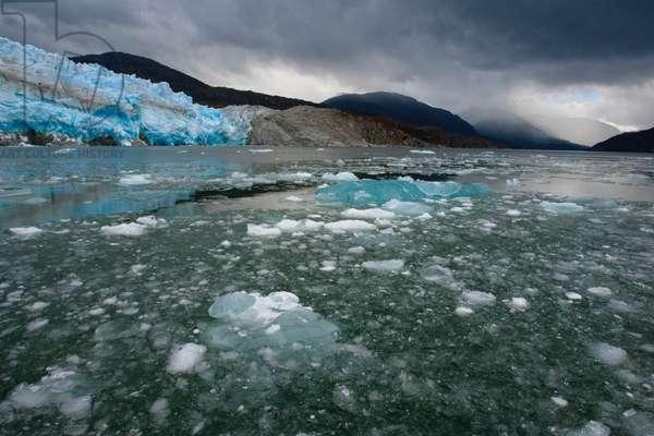 The retreating Iceberg Glacier in Bernardo O'Higgins National Park (photo)