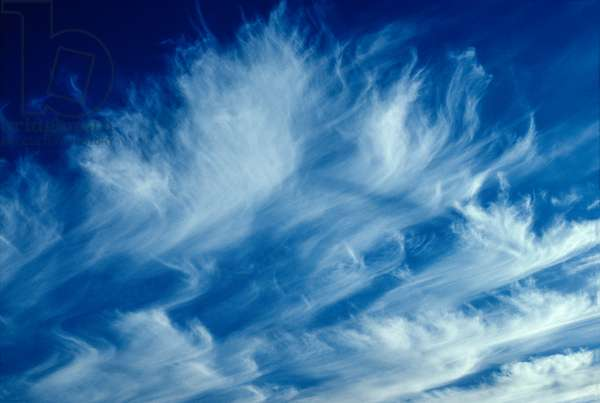 Cirrus clouds are ice clouds occurring at altitudes ranging from 20,000 to 40,000 feet (photo)