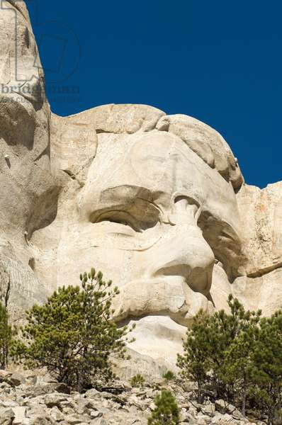Low angle view of president Theodore Roosevelt's sculpture on Mount Rushmore (photo)