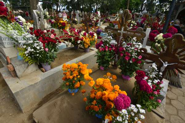 Graves decorated with flowers for Day of Dead celebration at the San Antonino cemetery (photo)