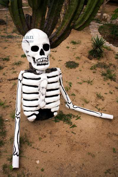 A man made skeleton emerges from the ground as part of the Day of the Dead celebration (photo)