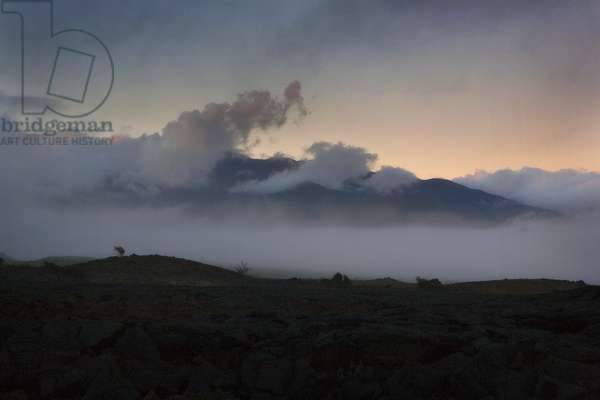 Fog lifts along the road between Hilo and Kona on the center of the Big Island of Hawaii at dusk (photo)
