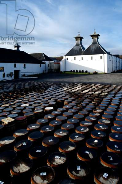 Barrels of whisky sit outside of the Ardbeg Distillery (photo)