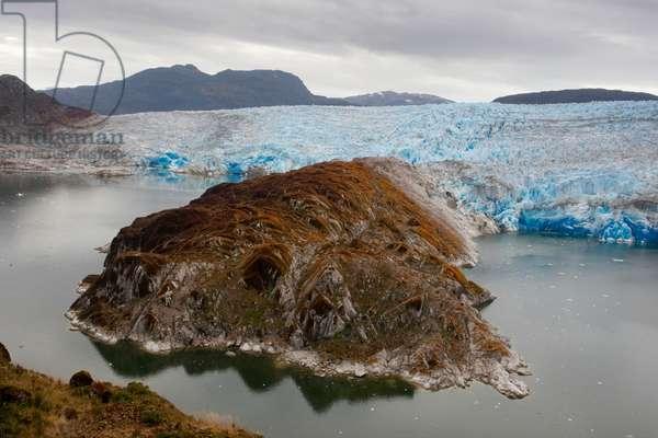 Lichens grow on Iceberg Glacier in Bernardo O'Higgins National Park (photo)