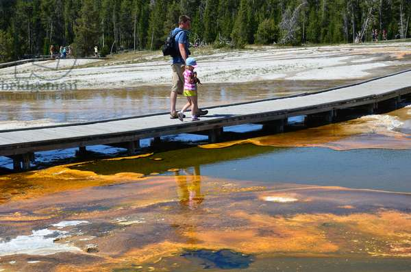 A young father and his daughter walk along a boardwalk over hot water and colourful algae near the Old Faithful Inn, Yellowstone National Park, Wyoming (photo)