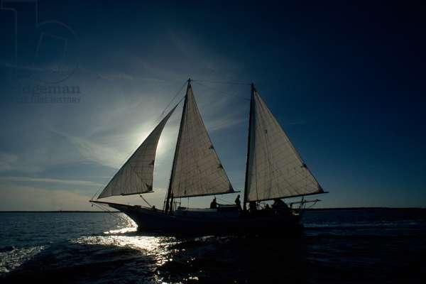 A backlit sailboat on the Atlantic Ocean (photo)