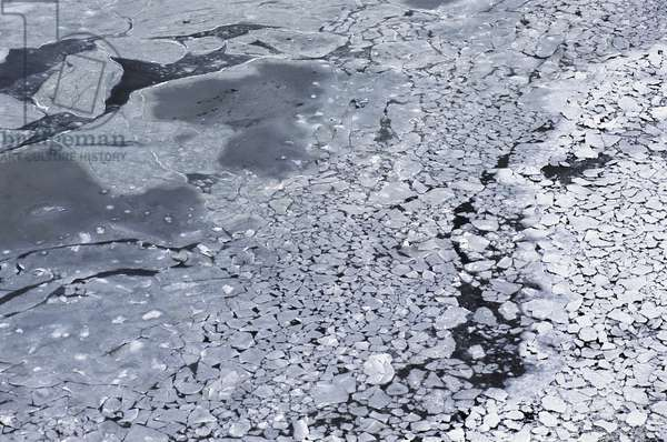 Hudson Bay starts to freeze as the Arctic winter begins
