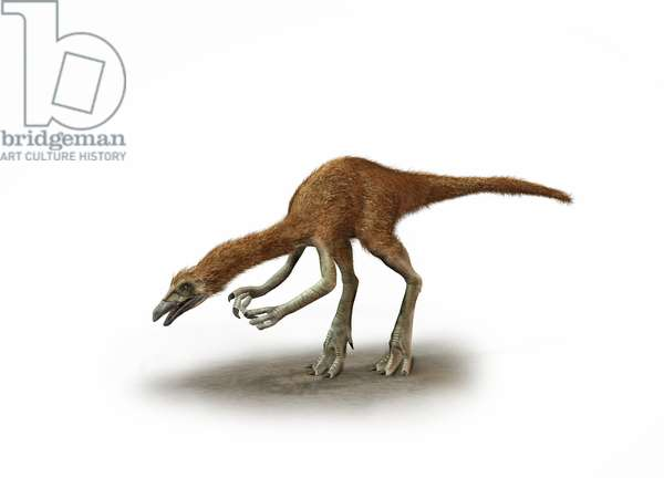 A Deinocheirus with enormous arms and giant claws (colour litho)