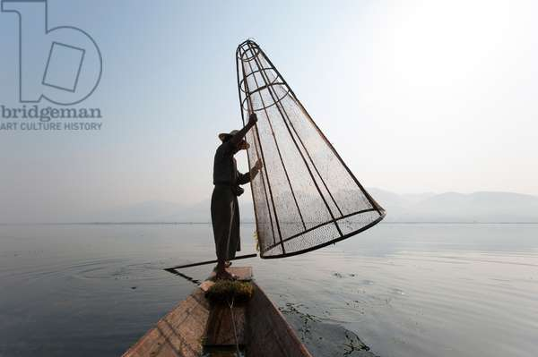 A basket fisherman on Inle lake prepares to plunge a cone shaped net