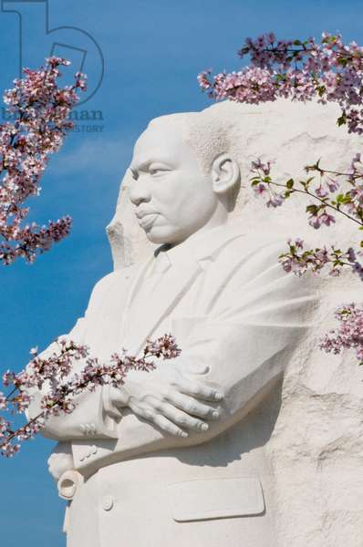 Martin Luther King Jr Memorial during the Cherry Blossom Festival