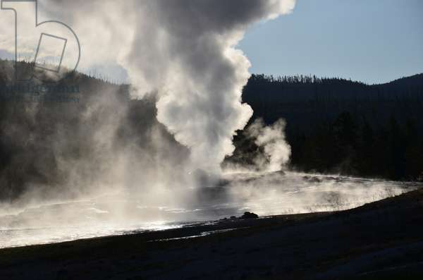 Hot water and steam spout from the Old Faithful Geyser in Yellowstone, National Park, Wyoming (photo)