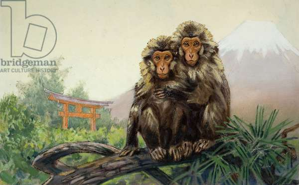 A pair of Japanese macaques with Mount Fuji in the distance (colour litho)