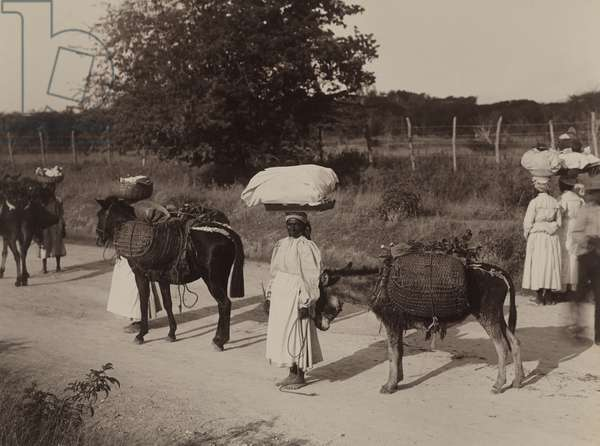 Women and donkeys transport loads of goods across the island, Jamaica, 1922 (b/w photo)