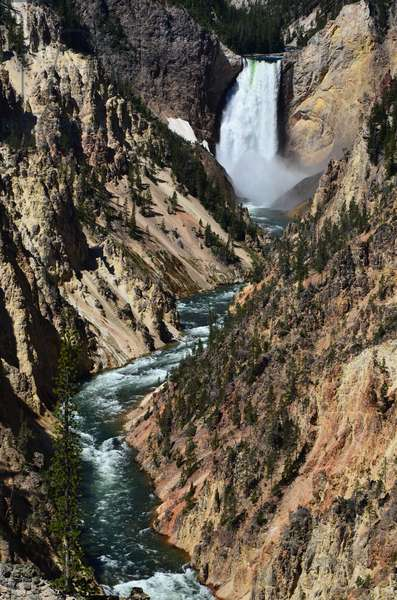 Water from the Yellowstone River rushes over the Lower Falls and into the Grand Canyon of the Yellowstone in Yellowstone National Park, Wyoming (photo)