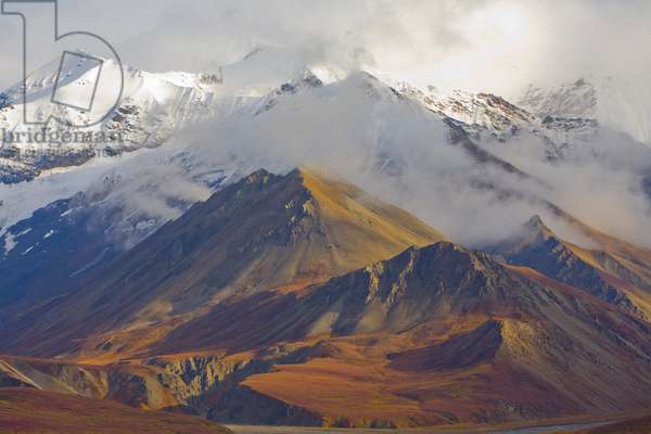 Snowy peaks of the Alaska Range and colourful tundra in fall (photo)