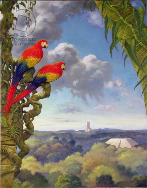 Scarlet Macaws at a Maya Monument (oil on canvas)