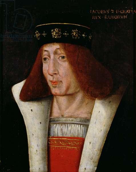 James II (oil on panel)