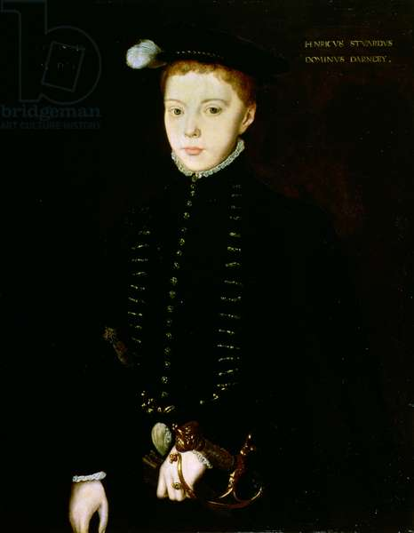 Henry Stewart, Lord Darnley, 1555 (oil on panel)