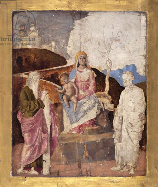 Virgin and Child with St. Andrew and St. Peter, c.1500 (panel)
