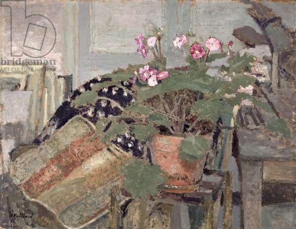 Pot of Flowers, c.1904 (board)