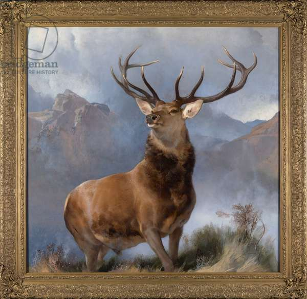The Monarch of the Glen, c.1851 (oil on canvas)