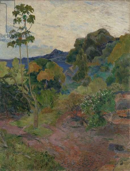 Martinique Landscape, 1887 (oil on canvas)