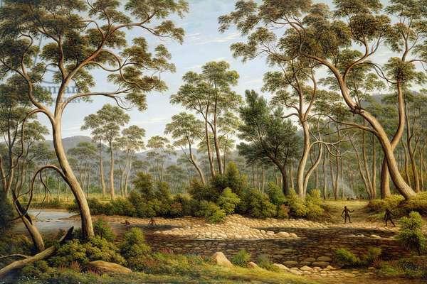 The River Nile, Van Dieman's Land, from Mr Glover's Farm, 1837 (oil on canvas)