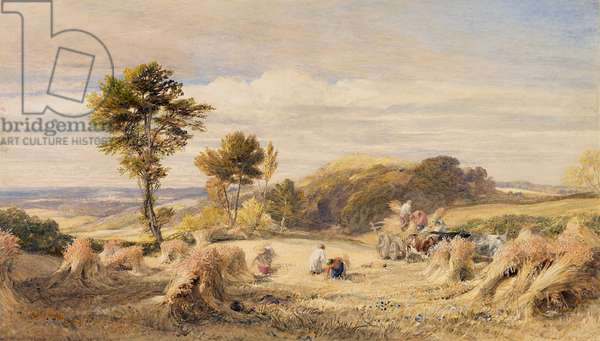 Carting the Wheat, 1844-48 (w/c on paper)
