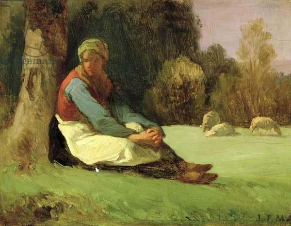 Seated Shepherdess (oil on board)