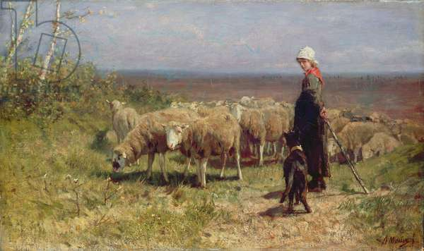 Shepherdess (oil on canvas)