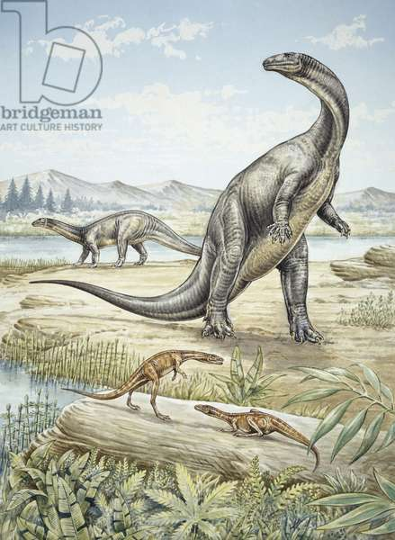 Upper Triassic dinosaurs discovered in Southern Germany (colour litho)