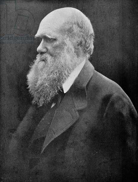 Charles Robert Darwin (b/w photo)