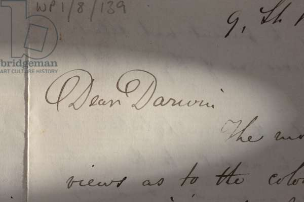Wallace's letter to Darwin