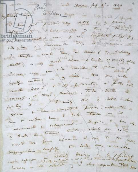 Letter written by Charles Darwin to Emma