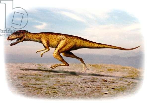 Herrerasaurus (colour litho)