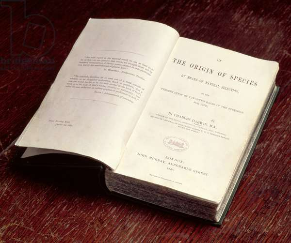 The Origin of the Species, first edition open at the titlepage, written by Charles Darwin (1809-82), pub. by John Murray, 1859 (photo)