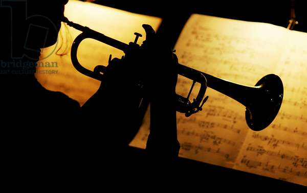 Trumpeter silhouette against lit-up