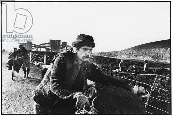 Striking Miners, Hatfield Colliery, Yorkshire, 1984 (b/w photo)